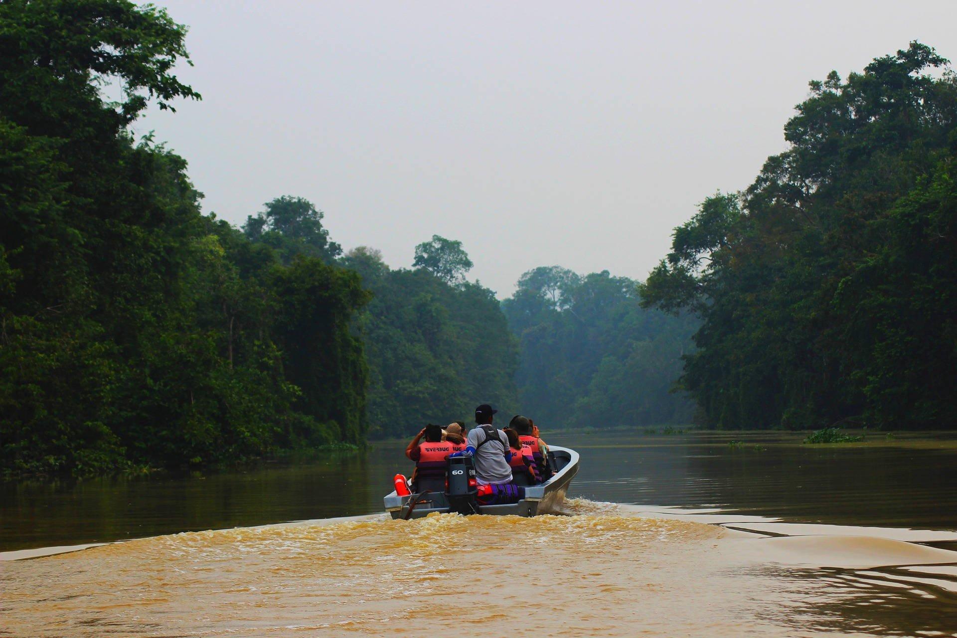 Rainforest adventure, Borneo